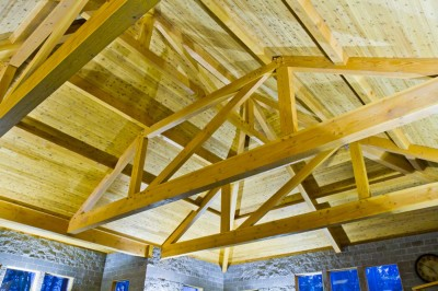 Custom ceiling featuring open beam construction